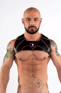 Spartas Harness Tauro Harness